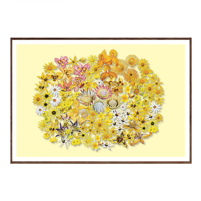 FYNBOS FLOWERS ON CREAM ART PRINT