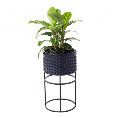 WOVEN PLANTER MEDIUM