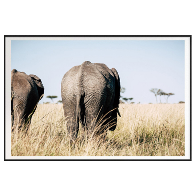KENYA ELEPHANT BUMS FILM ART PRINT