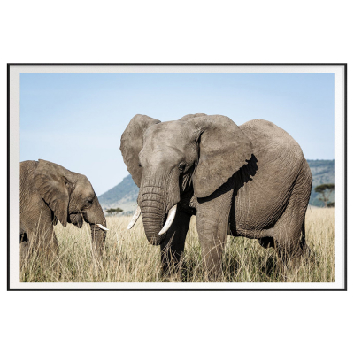 KENYA ELEPHANTS FILM ART PRINT